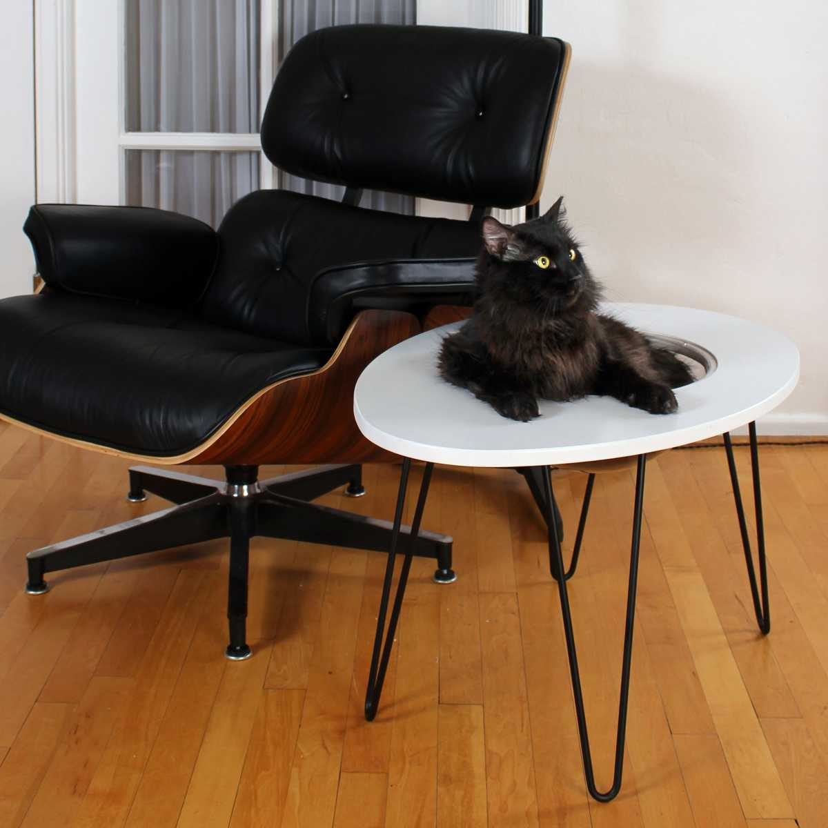 Picture of: Nestegg Raised Cat Bed Side Table Catsplay Superstore