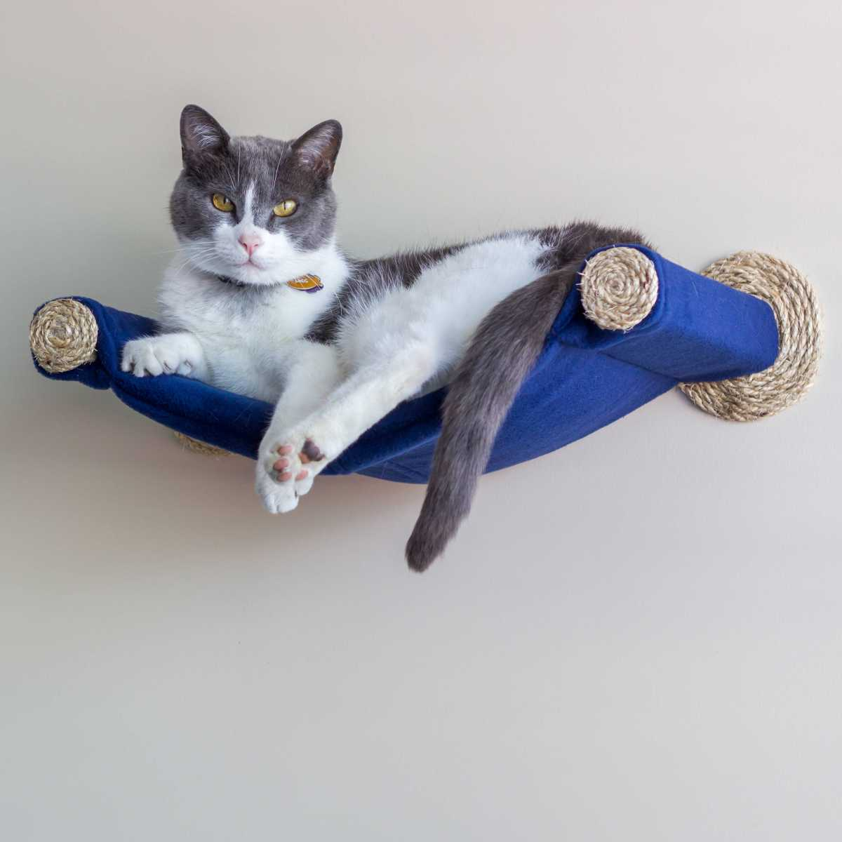 Cat Hammock Wall Mounted Cat Bed Blue Catsplay Superstore