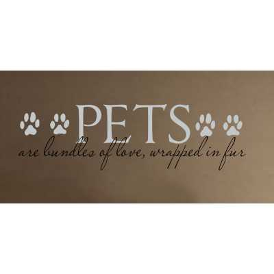 Cat Themed Wall Accent Decal - Pets are Bundles of Love