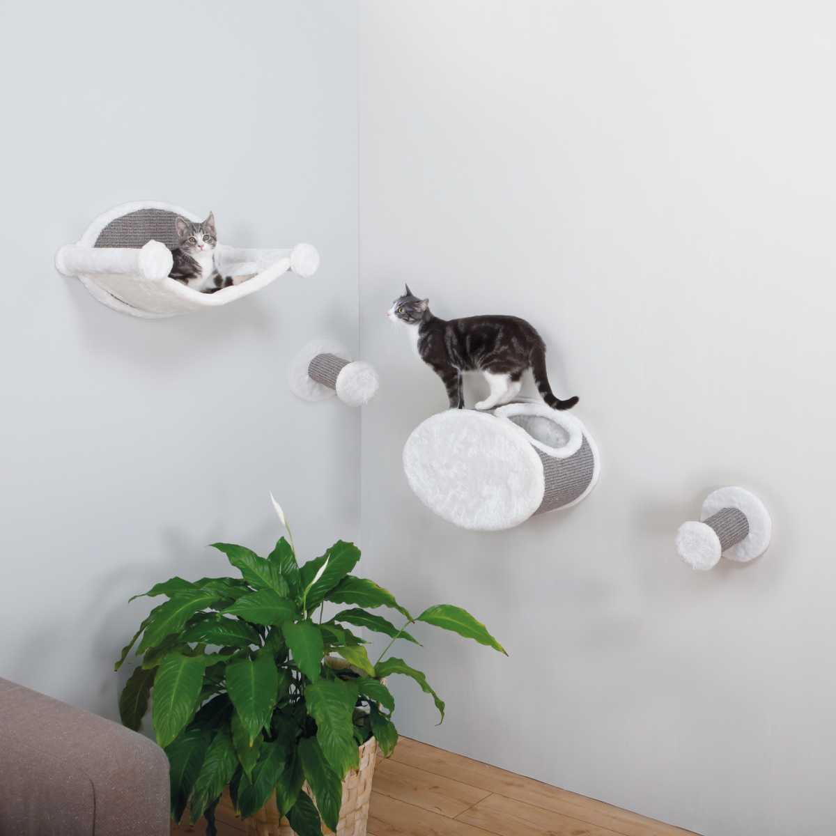 Wall Mounted Cat Play Set Catsplay Superstore