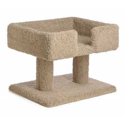 20 Inch Cozy Cat Jumbo Box Image