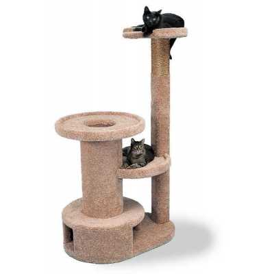 Feline Flats Cat Gym Image