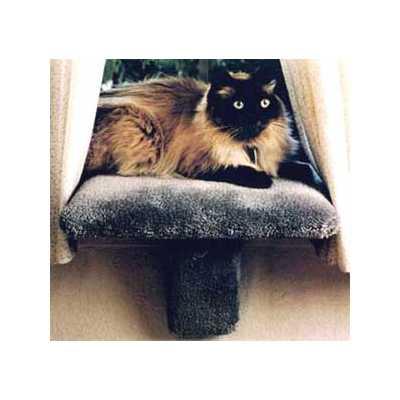 Small Padded Cat Window Perch Image