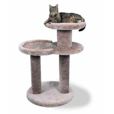 The Cat Sleeper Perch Image