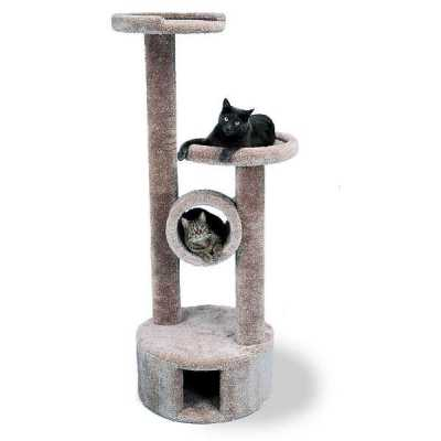 Toms Tower Cat Gym Image